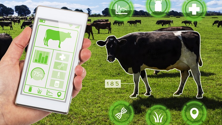 Smart Farming: Harvesting Data